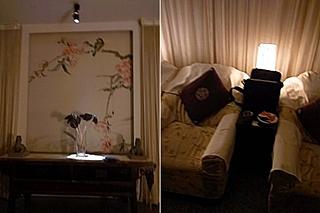 20090726store11cats.jpg
