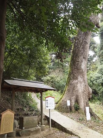 20120410atami112.JPG