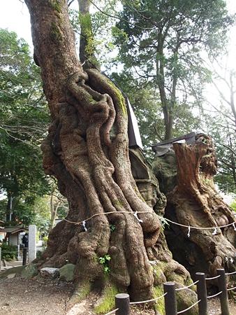 20120410atami64.JPG