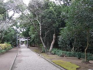 20091215pic1313.jpg