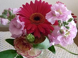 20091108hana11.jpg