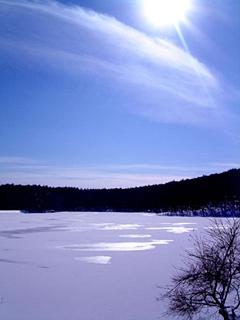 20091231pic11.jpg