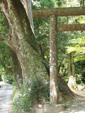 20100825kumano2424.jpg
