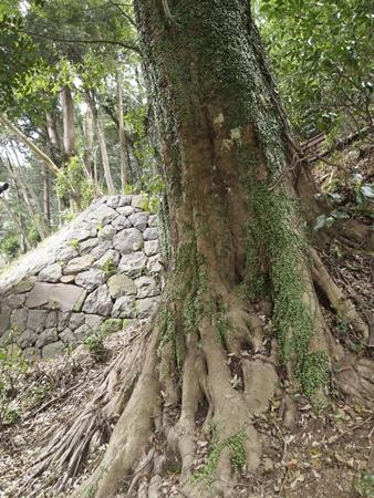 20120410atami110.JPG