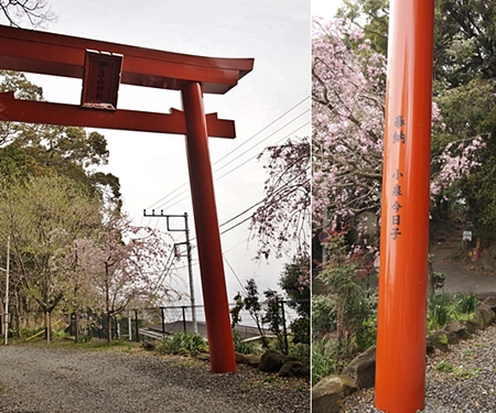 20120410atami117.JPG